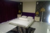 Cần bán căn hộ Lofthouse Phú Hoàng Anh, DT 130m2, nhà đẹp, tặng nội thất