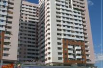 Cần cho thuê gấp căn hộ Screc tower ,Dt 81m2, 2 phòng ngủ, trang bị nội thất đầy đủ