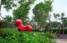 Căn hộ Tân Phú, giá chỉ từ 1 tỷ đến 3 tỷ, ngay trung tâm với nhiều tiện ích