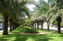 Hưng Thịnh chính thức nhận đặt chỗ căn hộ cao cấp Trung Sơn Plaza, cách cầu Nguyễn Văn Cừ 5 phút