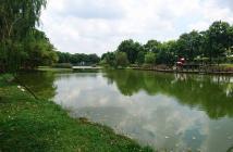 CH Celadon City đạt chuẩn môi trường sống tốt cho gia đình bạn