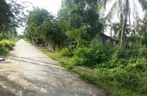 Biệt thự nhà vườn, mặt tiền view sông lớn, đường 25m, 1000m2. 300 thổ cư.