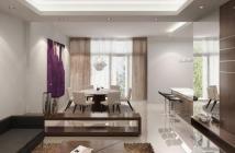Bán Căn hộ chung cư 8X Đầm Sen, đã bàn giao nhà, hoàn thiện cơ bản giá 850 triệu, giá bao gồm thuế.//...,,