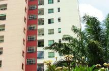 Cần bán căn hộ chung cư Conic Đình Khiêm, Bình Chánh, DT 74m2, 2PN, giá 850 triệu lầu cao