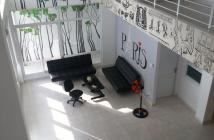 Bán 2 căn Penhouse tại CC B1 Trường Sa, Q. Bình Thạnh, HCM