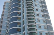 Bán căn hộ chung cư tại Tân Phú, Hồ Chí Minh diện tích 74m2 giá 1.45 tỷ