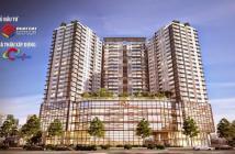 Cần bán căn hộ EverRich Infinity, An Dương Vương, quận 5