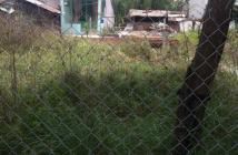 Cần bán lô đất ,trồng cây lâu năm, hẻm ,đường lê văn lương ,xã nhơn đức ,huyện nhà bè ,Tp HCM