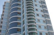 Bán căn hộ chung cư tại Tân Phú, Hồ Chí Minh, diện tích 74m2, giá 1.45 tỷ