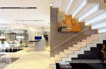 Căn hộ Duplex đầu tiên tại quận 8, MT Tạ Quang Bửu, 20tr/m2.