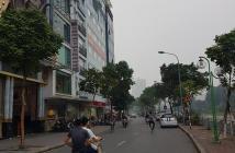 Đẳng cấp kinh doanh mp Nguyễn Khang 160m mặt tiền 15m giá cả liên hệ