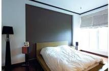 Nhận đặt chỗ Topaz Elite, Q8, Dragon block đẹp nhất dự án giá chỉ 22tr/m2. LH 0903.105.193