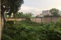 Bán đất nền ngay khu công nghiệp long hậu Đ nguyễn văn tạo nhà bè TPHCM-DT 301m2-137m2 giá tốt sổ hồng riêng