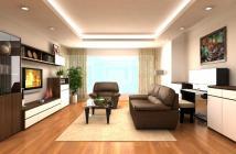 Cho thuê căn hộ Riverside Residence, Phú Mỹ Hưng, lầu cao, giá rất tốt.