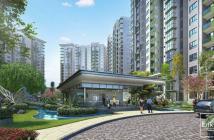 Căn hộ Celadon City khu phức hợp đô thị mới. Môi trường sống xanh hoàn hảo