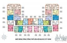 Cần sang nhượng căn hộ, 2PN, giá 1,2 tỷ, dự án Heaven Riverview, Q8. LH 0971 109 601