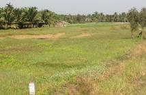 Bán đất nền nông nghiệp 450 nghìn/m2