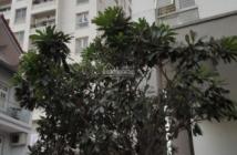 Bán căn hộ Splendor Gò Vấp 3PN, sổ hồng riêng, giá 2,2 tỷ. LH: 0902.474.471 Vũ
