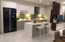 Gia đình mình cần cho thuê căn hộ Goldview 2pn,2wc giá 28tr/th TL