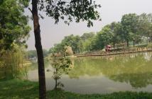 Cần tiền bán gấp căn hộ Celadon Tân Phú Ion Nhật, dt: 82m2, giá 2 tỷ 550tr. LH: 01225782874