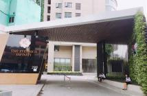 Nhượng lại căn hộ cao cấp 30m2, tòa nhà The Everrich Infinity, Quận 5