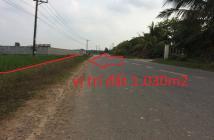 Bán đất tại đường Tỉnh Lộ 7, Xã Thái Mỹ, Củ Chi, Tp. HCM, diện tích 1030m2, giá 2 tỷ