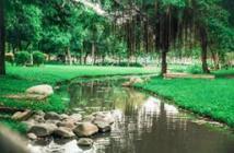Cần chuyển nhượng gấp căn hộ Celadon city,lầu 4 view công viên tuyệt đẹp giá chỉ 2,2 tỷ 65m2,nhà ở ngay