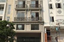Cho thuê nhà mới 100% Phú Mỹ Hưng, làm căn hộ mini, dịch vụ, khách sạn, 16 phòng, nội thất cao cấp