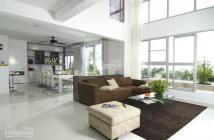 Chính chủ cho thuê căn biệt thự Nam Viên PMH, 330m2, giá thuê 80tr có thương lượng, 0903015229
