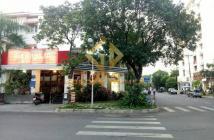 Cần cho thuê biệt thự 2 mặt tiền tại Phú Mỹ Hưng, diện tích 12,5 x 18m, 4 phòng ngủ, sân vườn.LH 0918360012