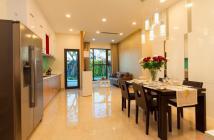 Bán nhanh căn hộ Golden Star, 77m2, 2PN, giá tốt, đối diện Big C Quận 7