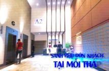 Safira Khang Điền mở bán đợt đầu tháng 9/2018, giá chỉ từ 25 triệu/m2