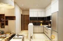 Xuất cảnh bán gấp căn hộ Park view 110m2, 3 phòng ngủ, đầy đủ nội thất, giá rẻ
