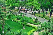 Bạn nghĩ sao khi trước nhà mình là khu công viên lớn nhất Quận Tân Bình??