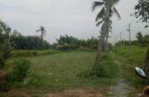Cần tiền bán lô đất đối diện KDL BCR Quận 9