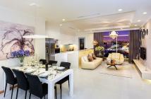 Bán gấp căn hộ penthouse Hưng Vượng 2. DT 165m2-3PN lớn, Bùi Bằng Đoàn Phú Mỹ Hưng, P Tân Phong, Q7