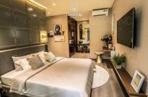 Chính chủ nhượng lại căn hộ Diamond Alnata view đại lộ Gamuda, chênh lệch thấp, PTTT đặc biệt
