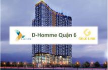 Đang nhận booking cho 120 căn hộ cao câp D_HOMME đợt 1,Hồng Bàng Quận 6 , Lh 0902443676