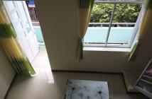Bán căn hộ chung cư quận 1 đường Nguyễn Công Trứ, dt 28m2
