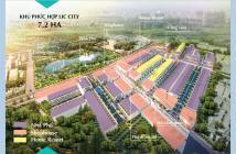 BÀ RỊA VŨNG TÀU CÓ TUYẾN PHỐ CHECK IN 3D ĐẦU TIÊN TẠI DỰ ÁN LIC CITY, ĐẤT NỀN SHR CHỈ 850TR/100M2