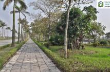 Biệt thự Vườn Cam Vinapol chuyên tư vấn mua bán