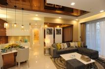 Cần bán gấp 1 cặp căn Riverpark Premier, Phú Mỹ Hưng lầu cao, view trọn sông. Diện tích 260m2 giá tốt