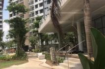 Chuyên chuyển nhượng căn hộ Palm Heights giá hot thị trường .