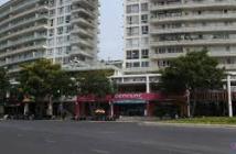 Bán gấp căn hộ Grand View Phú Mỹ Hưng Q7 diện tích 118m2, bán 4.6 tỷ