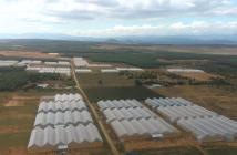 Đất xưởng, trồng cây, chăm nuôi chỉ 50.000m2 lô 4000m2 chỉ 200tr