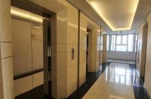 Cho thuê căn hộ chung cư Dockland, Q.7, MT Nguyễn Thị Thập, DT 117m2, 3PN, giá 17tr5/th, lầu cao, view thoáng mát, căn góc, đầy đủ...