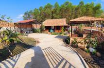 Nhà vườn Tân cổ điển - GARDEN HOUSES 1