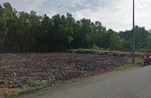 Cần bán hai lô đất đẹp giá tốt tại Nhơn Trạch Đồng Nai