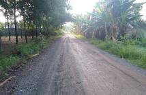 Bán Đất  Mặt Tiền Đường Phùng Hưng, Minh Hưng 20x44 100TC - Ra QL13 chỉ 50m