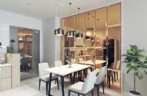 Chính chủ cần bán căn hộ chung cư Cloudy Đầm Sen Tân Phú LH: 0969653853